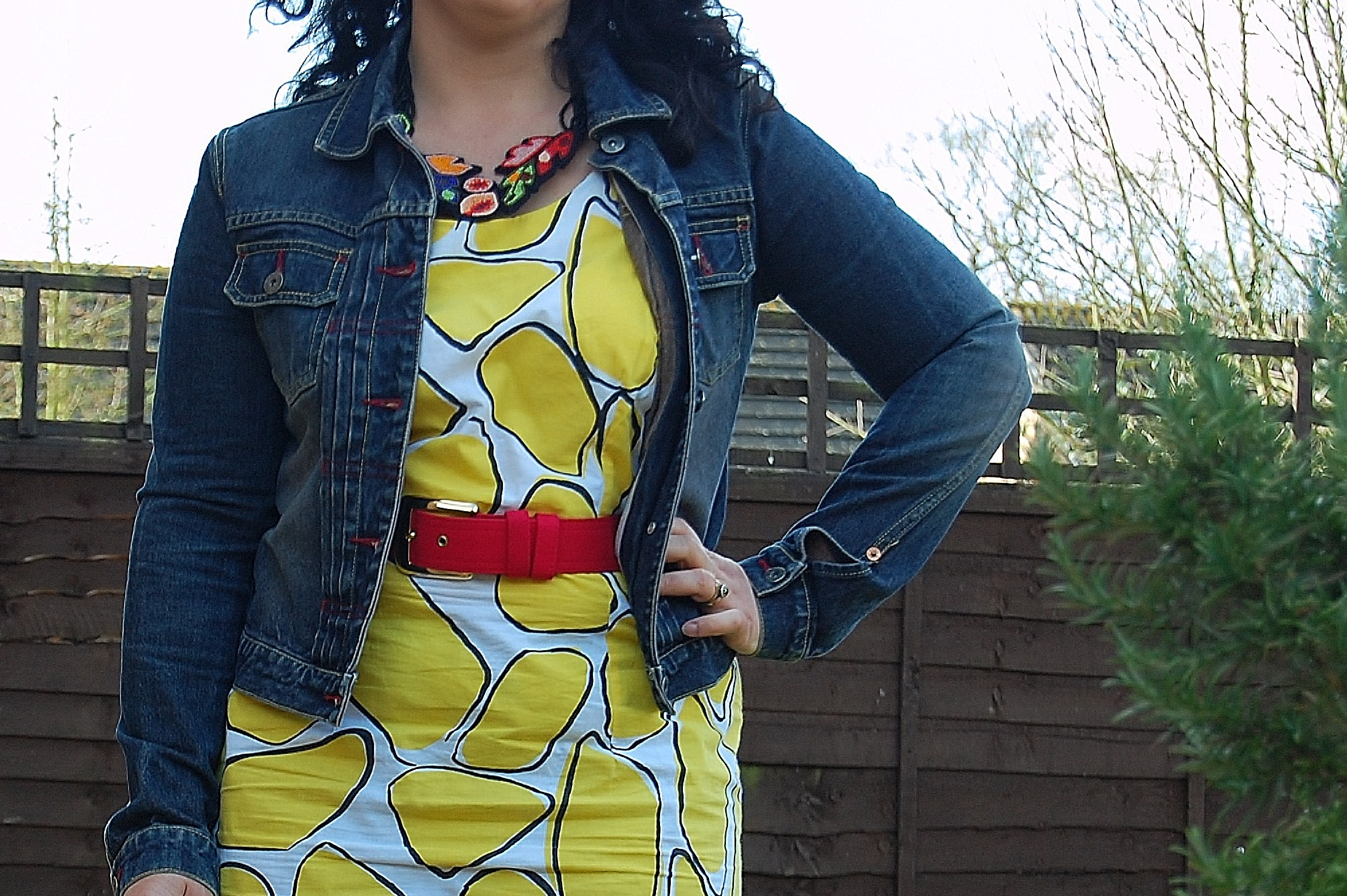 087 2 Crazy Yellow Print Dress