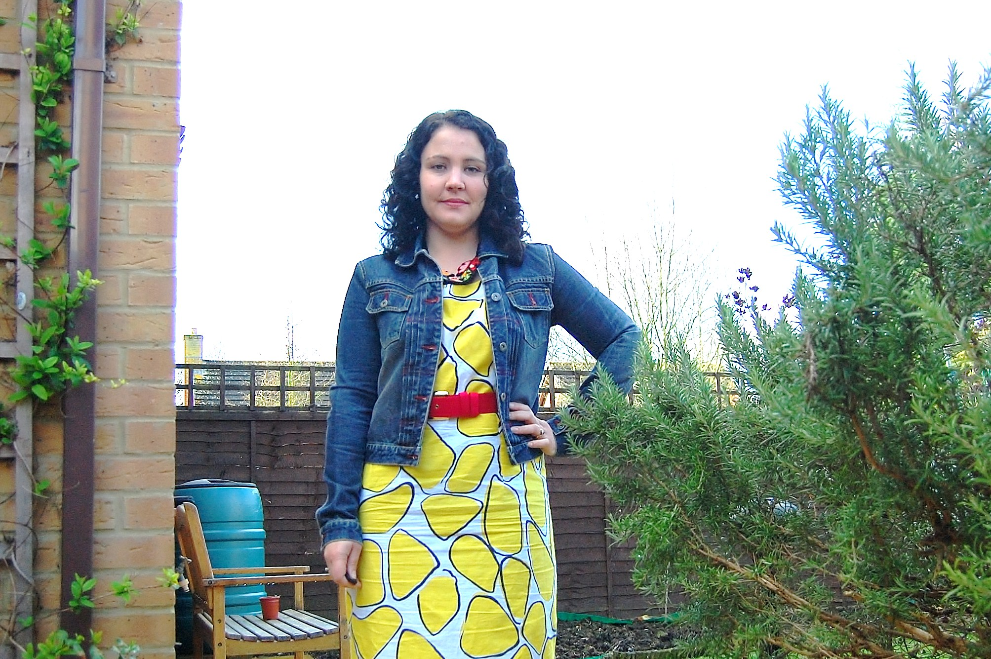 103 Crazy Yellow Print Dress