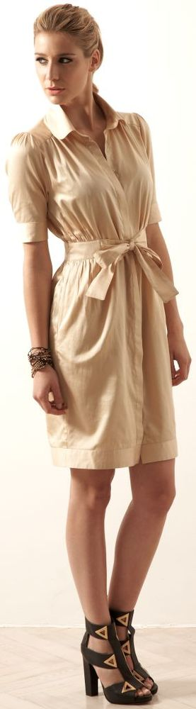 fitted shirt dress1 Outsider