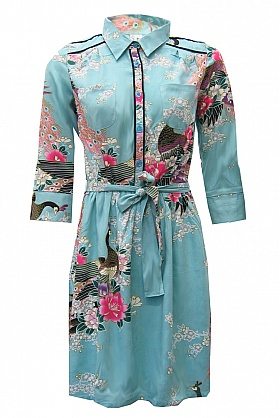 peacock shirt dress Spring Wish List