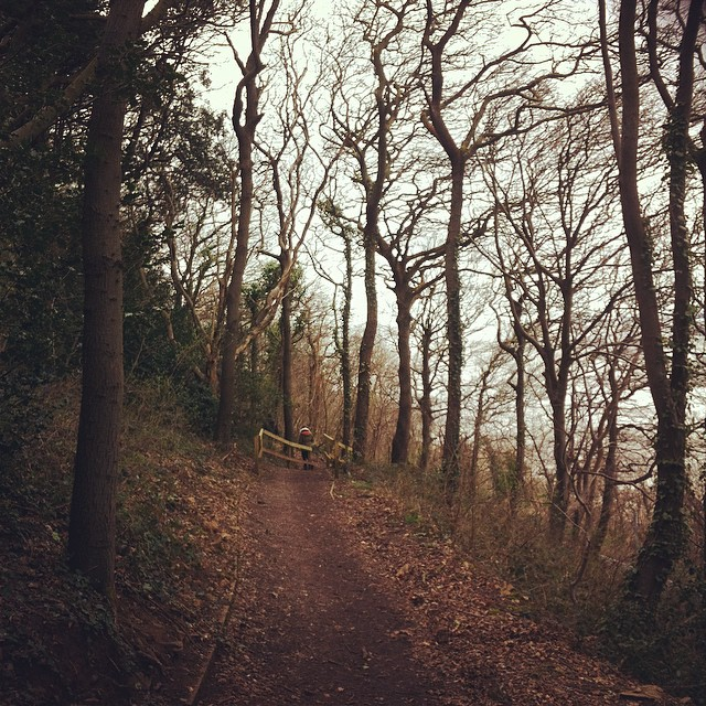coastal woodland walk Easter Weekend